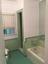 feb-2017-bathroom-shower
