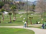 pan pacific park 2